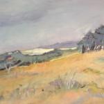 Engelse veld