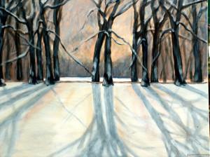 Winter schaduw